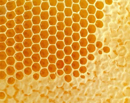 a propolisz pikkelysömör gyógyítja a bőrön lévő foltok vörösek a bőrön
