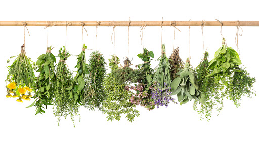 gyógynövények a fej pikkelysömörére