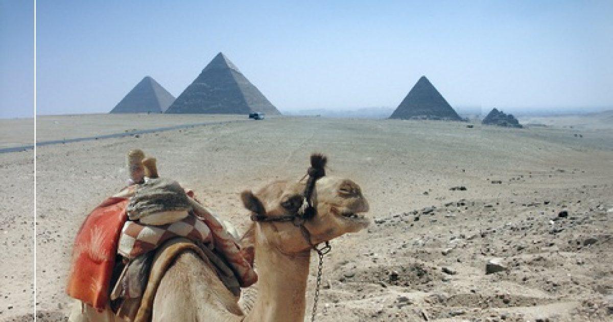 pikkelysömör kezelése egyiptomi safaga
